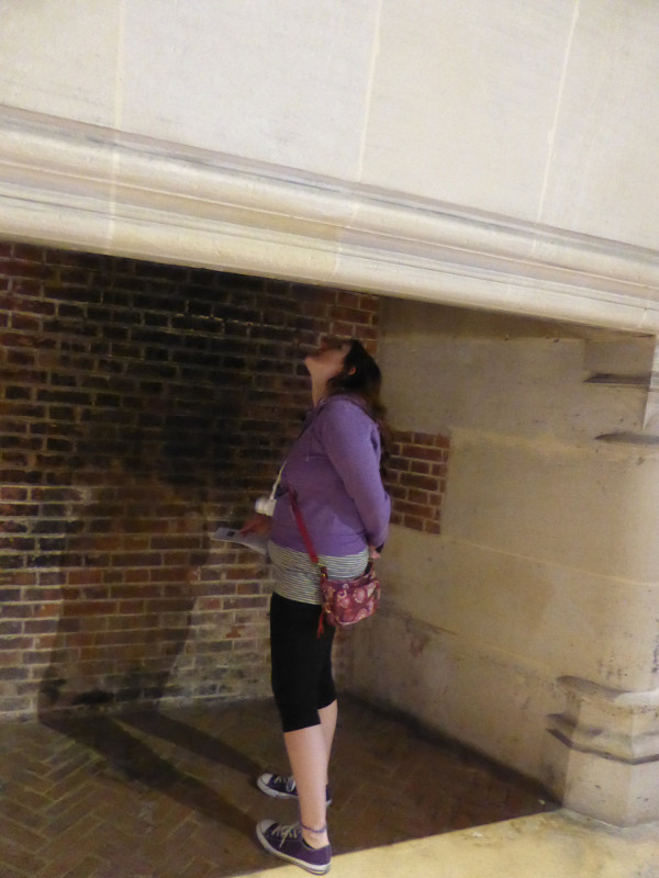 My Dear Sister looking up a huge chimney