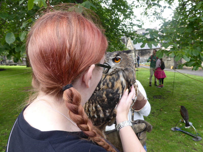 Meeting a European Eagle Owl in Greyfriars Kirkyard