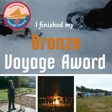 I finished my Bronze Voyage Award header pic