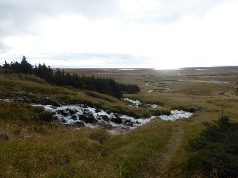 The view down to the sea from Bjarnarfoss