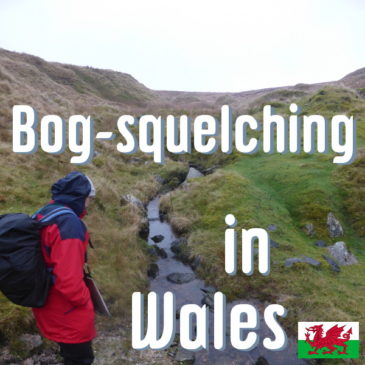 Bog-squelching in Wales header pic