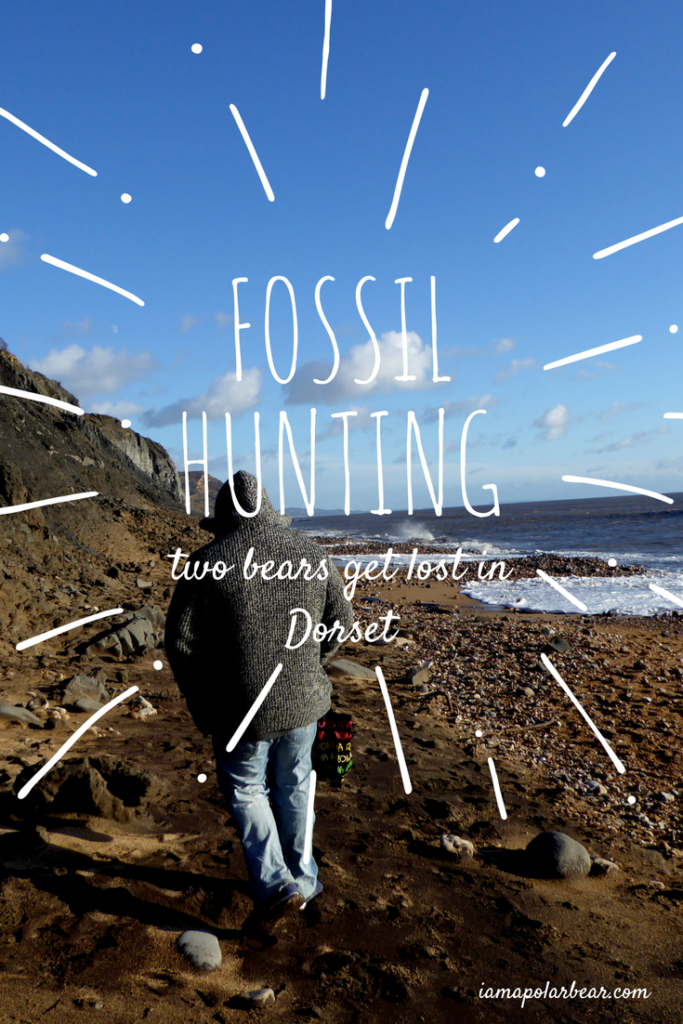 Fossil hunting in Charmouth iamapolarbear.com